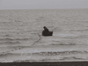 Utqiaġvik fisherman using a small skiff to pick his gill net, August 15, 2011. Photo: Courtney Carothers